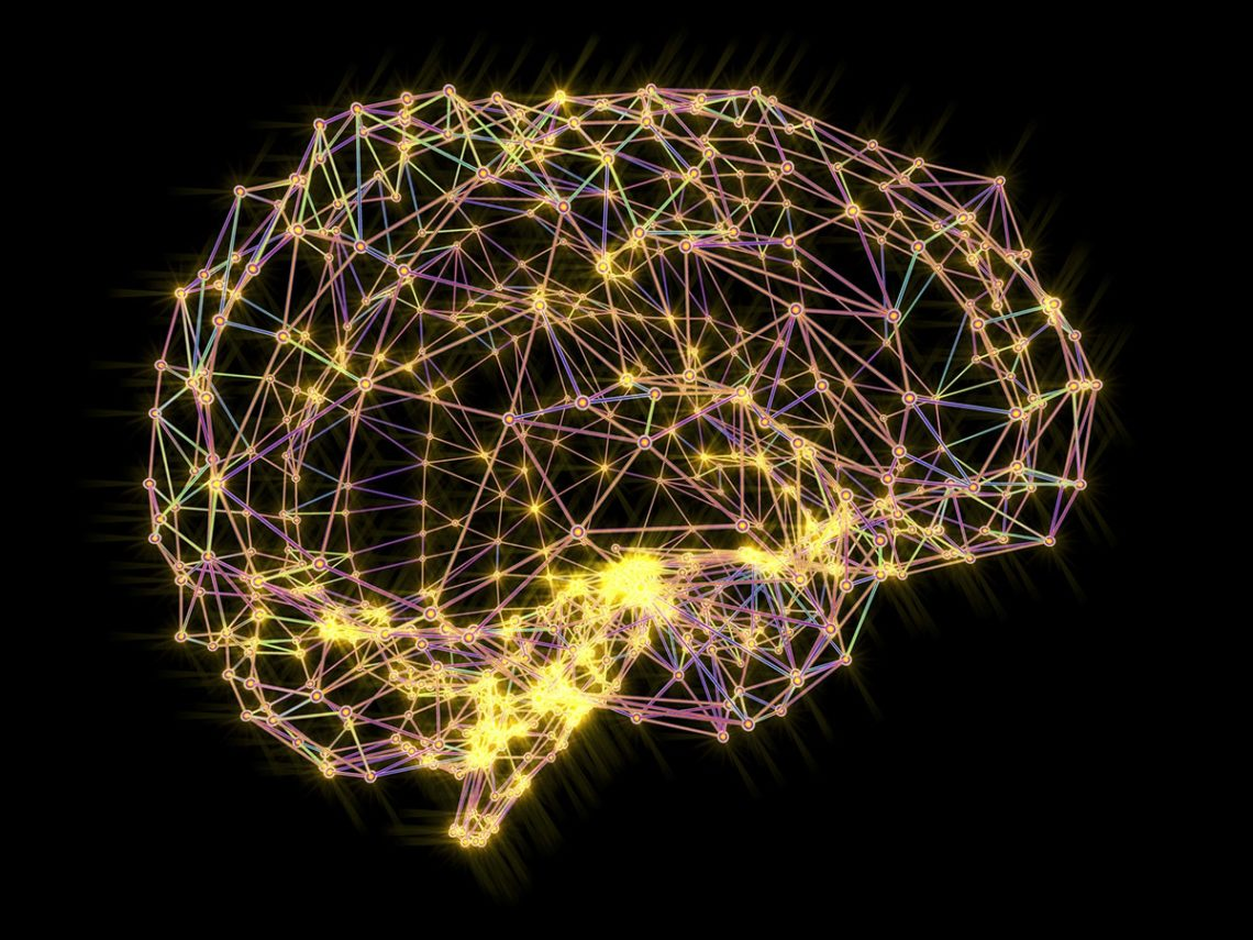 Kitchener Counselling services explore the Amygdala and Stress effects